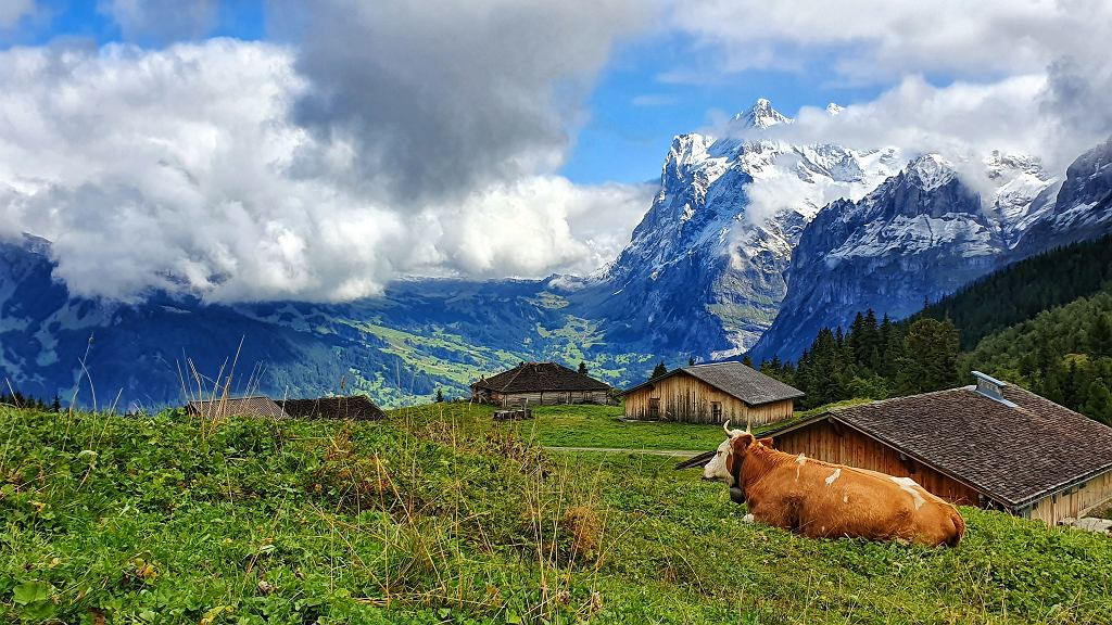 W drodze na przełęcz Kleine Scheidegg