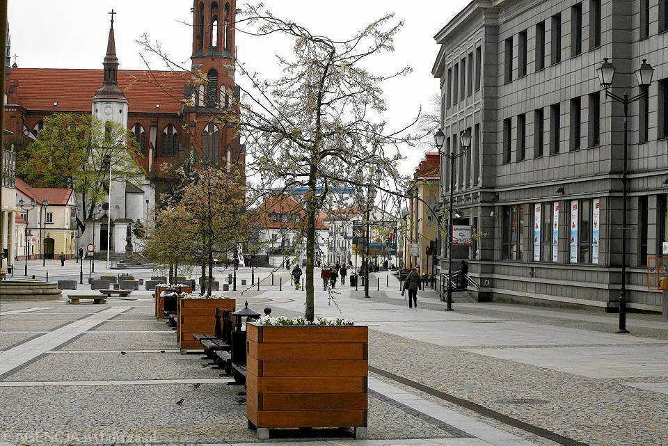 Takie donice z drzewkami stały w Białymstoku kilka lat temu