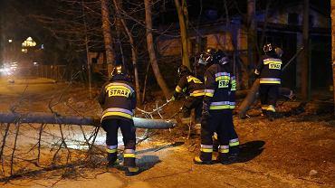 Strażacy z Zakopanego usuwający skutki zniszczeń po wichurze (zdjęcie ilustracyjne)