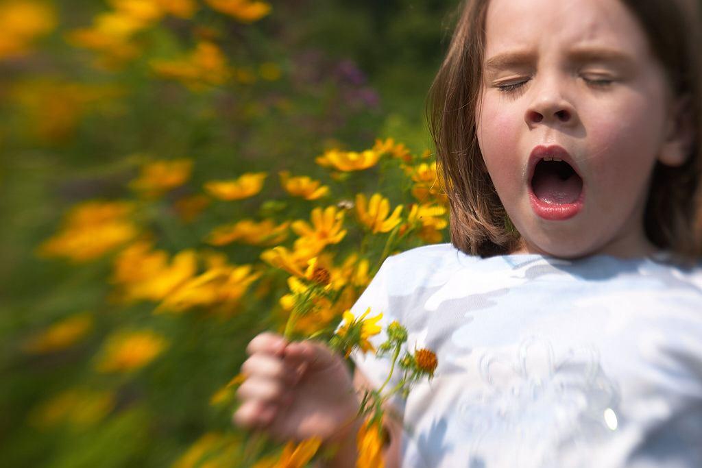 Alergia to choroba XX wieku