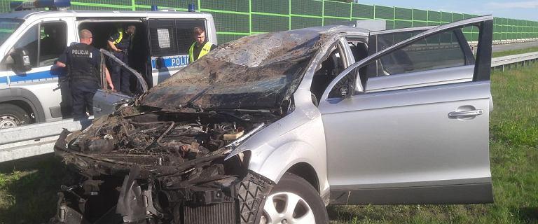 Tragedia na A1 w Łodzi. Nie żyje 50-latek, sprawca wypadku uciekł