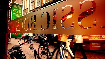 Holandia Amsterdam - coffeeshop