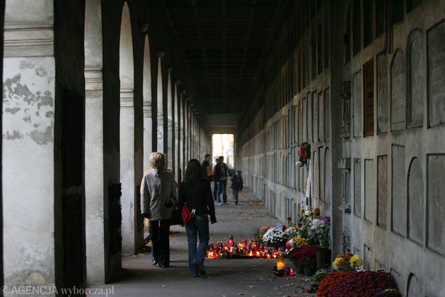 Warszawa Powązki. Aleja Katakumbowa, gdzie spoczywa Czesław Niemen / Fot. Sławomir Kamiński / AG