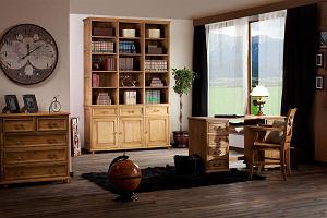 Czym malować drewniane meble? Najlepsze farby i preparaty