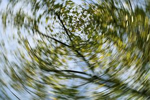 Zawroty głowy - czym są i jakie są ich najczęstsze przyczyny?
