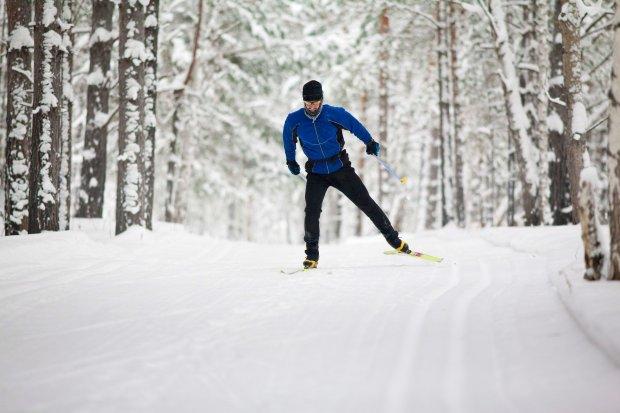 Bieganie na biegówkach, las, zima, biegacz, biegówki, narty biegowe