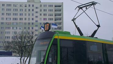 Niebiesko-białe chorągiewki na poznańskich tramwajach w dniu 91. rocznicy powstania Lecha Poznań