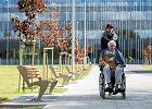 Ile mogą zarobić osoby opiekujące się seniorami?