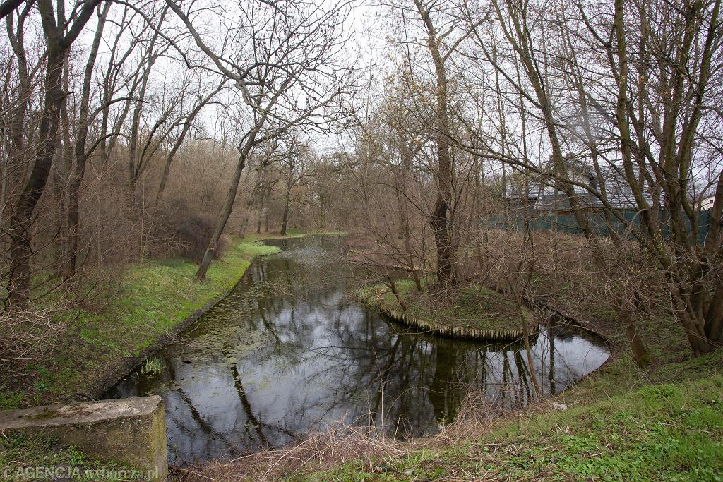 Las Sołtysowicki