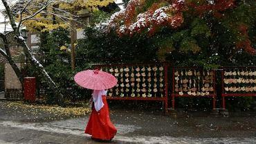 Tokio pod śniegiem