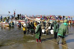 Senegalscy rybacy ograbiani z ryb. Zostaną piratami?