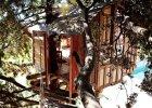 Domek na drzewie, czy sopocki jacht? Takich miejsc do spania nie znajdziecie nigdzie indziej. Oto Airbnb