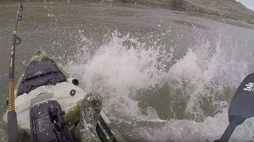 2,5-metrowa ryba prawie zatopiła łódkę