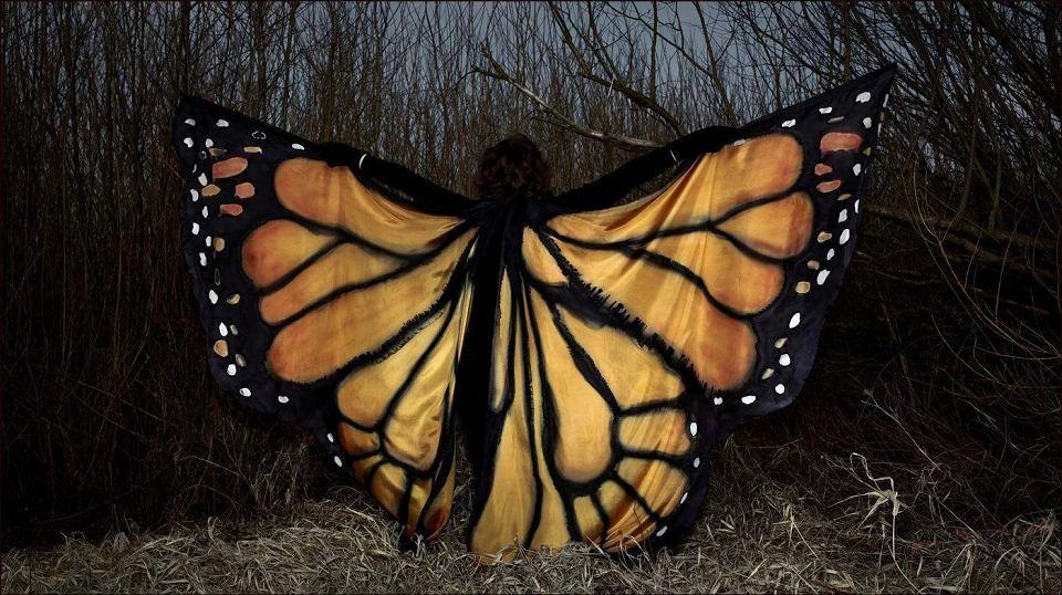 Zdjęcie numer 2 w galerii - Bajeczne skrzydła Doroty wylatują na cały świat [FOTO]