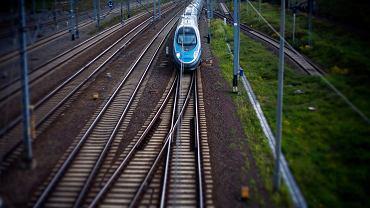 Pociąg PKP Intercity - Pendolino w Gdyni. 23 sierpnia 2016