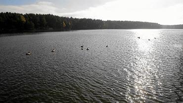 Skarżysko-Kamienna, zalew na Rejowie