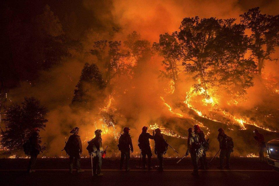 Strażacy podczas akcji - gaszą