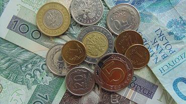 500 plus zdjęcie ilustracyjne, pieniądze