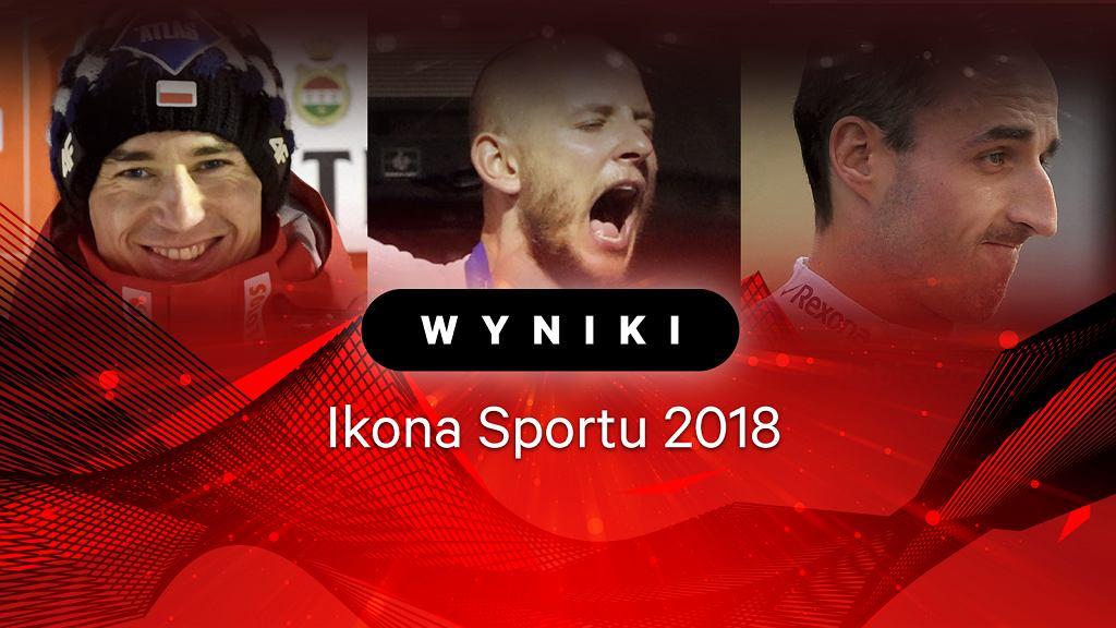 Zdjęcie numer 2 w galerii - Ikona Sportu 2018. Bartosz Kurek zwycięzcą plebiscytu!