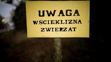 Tabliczka ostrzegająca przed wścieklizną - zdjęcie ilustracyjne