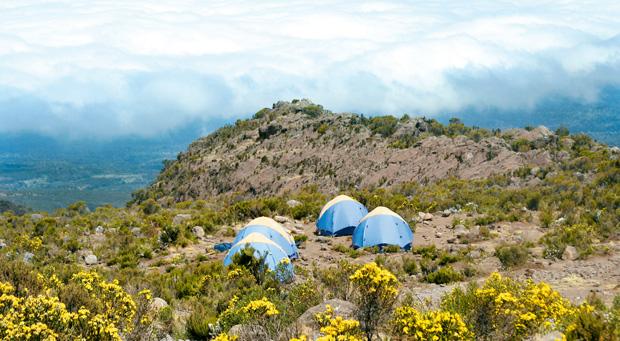 Podróże - jak zdobyć Kilimandżaro, podróże, afryka, Biwak na wysokości 3800 m n.p.m. W nocy temperatura spada poniżej zera. Marzymy o grzańcu, ale alkohol na tej wysokości nie jest wskazany