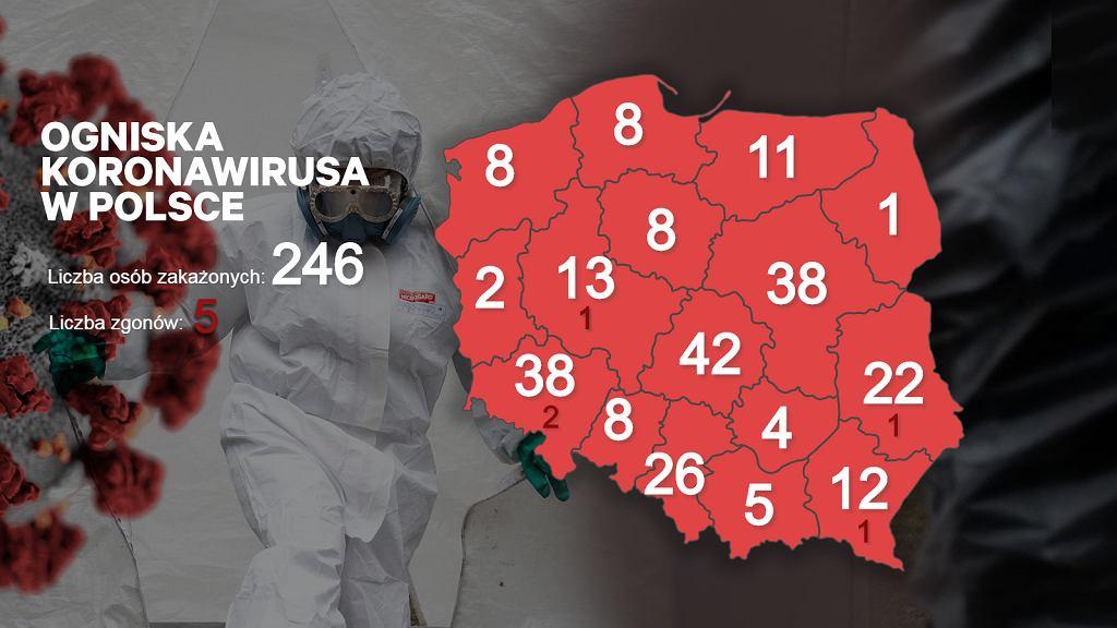 Ogniska koronawirusa w Polsce - środa 18 marca