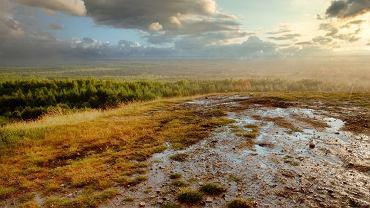 Pustynia Błędowska widziana ze szczytu Czubatka / fot. Shutterstock