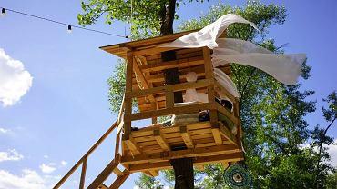 Ptaszarnia - kijowska restauracja rodem z dziecięcych marzeń. I możecie tam pojechać na weekend