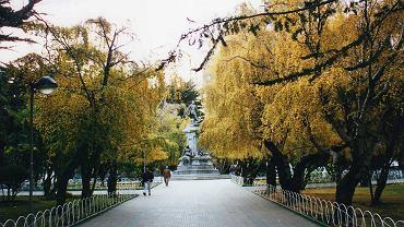 Jesień w parku w Punta Arenas na południu Chile
