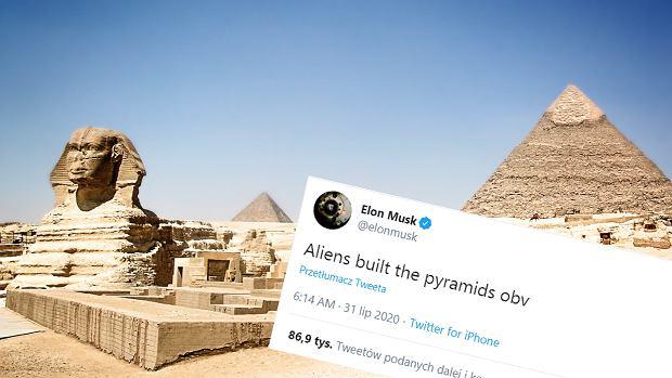 Elon Musk ma kolejną szaloną teorię. Tym razem twierdzi, że piramidy egipskie zbudowali kosmici