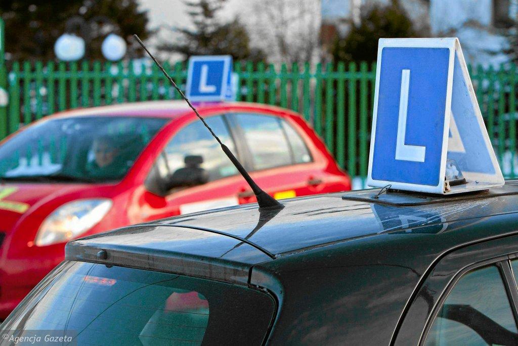 Zainteresowanie kursami na prawo jazdy jest umiarkowane.