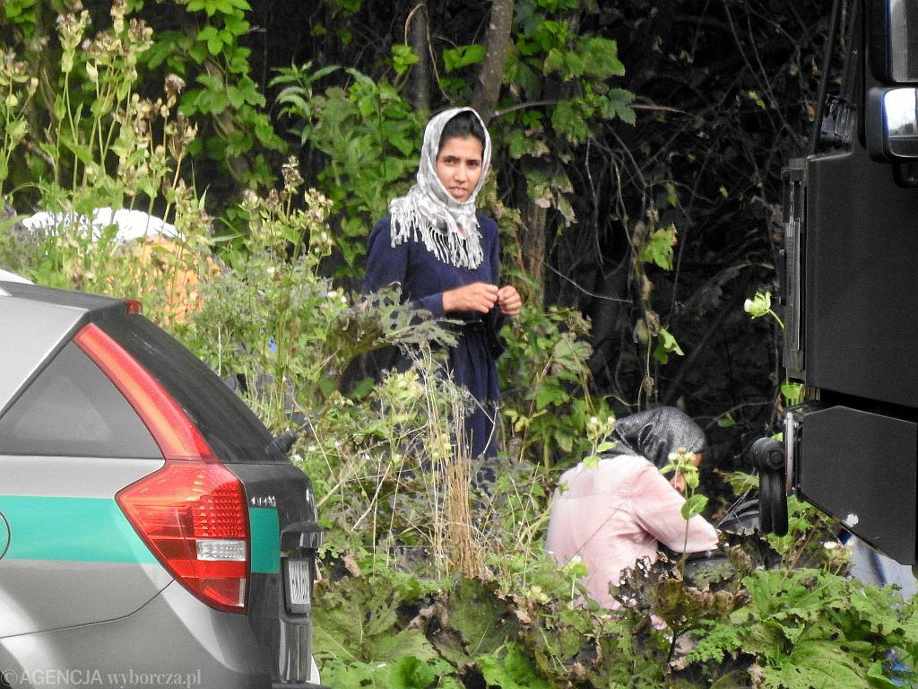 Migranci z Afganistanu koczujący na granicy polsko-białoruskiej