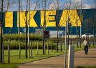Będzie Ikea w Bydgoszczy. Już poszukuje pracowników
