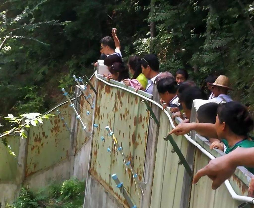 Turyści rzucają w pandę kamieniami