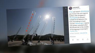 Siostra Kim Dzong Una grozi Korei Południowej. Kością niezgody 'propagandowe balony'
