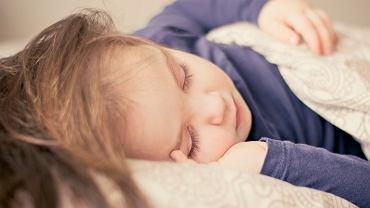 Odpowiednie rośliny to naturalna metoda na poprawienie warunków, w których śpimy