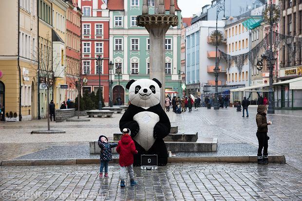 Zdjęcie numer 10 w galerii - Tłumy na Rynku we Wrocławiu. Spacery z jedzeniem na wynos i puszczanie baniek