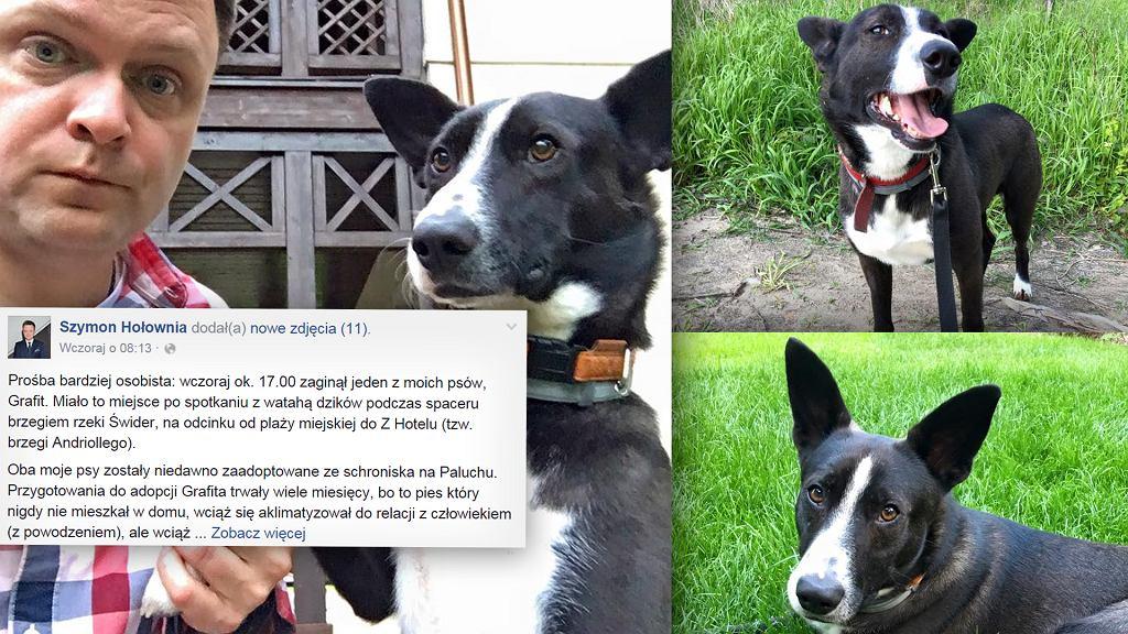 Szymon Hołownia szuka swojego psa. Zaginął Grafit