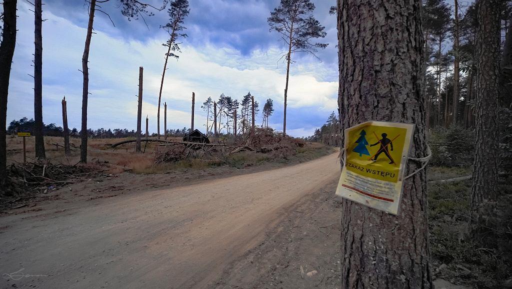 Na obszarze wokół miejscowości Rytel, Czersk, Lipusz wciąż obowiązuje zakaz wstępu do lasu