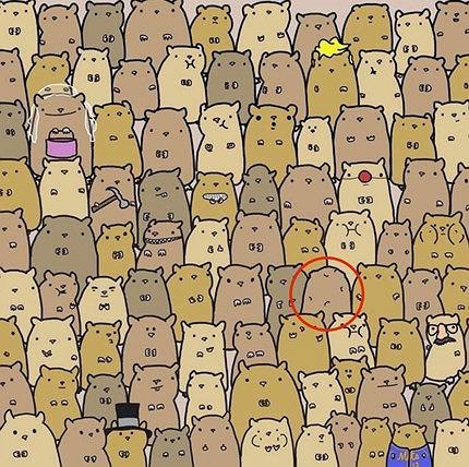 Znajdź ziemniaka