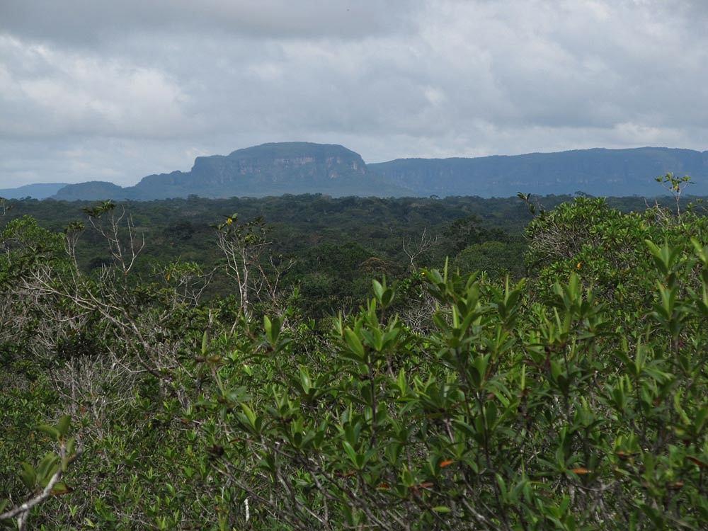 Tepui (fot. Maciej Tarasin/greenhell.org)