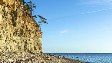 Klif Panga na wyspie Saaremaa