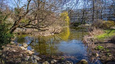 Wiosna w Bydgoszczy