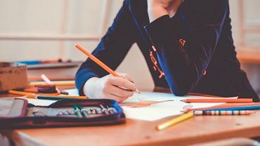Uczeń w szkole (zdjęcie ilustracyjne)