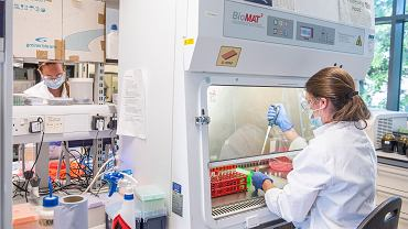 Obiecujące wyniki testu szczepionki na koronawirusa na Uniwersytecie Oksfordzkim