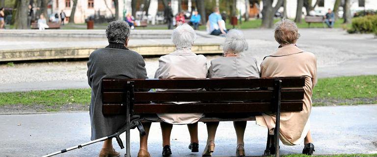Czternasta emerytura. Kiedy będzie wypłacana? Rząd podał termin