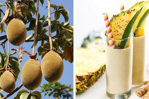 Baobab - nowy superfood. Jakie właściwości ma proszek z owoców najstarszego drzewa na naszej planecie?