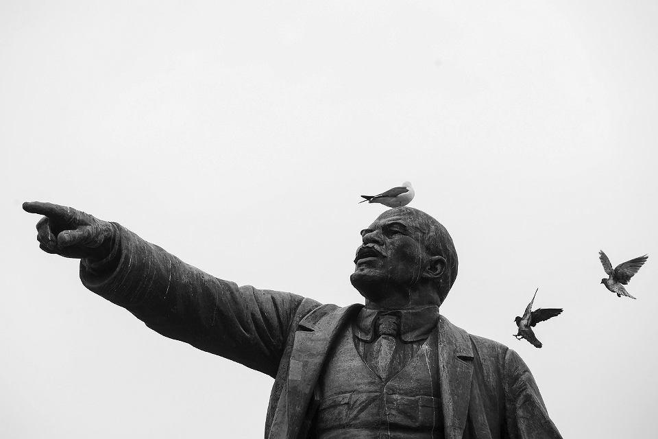 Gołębie na pomniku Lenina we Władywostoku na dalekim wschodzie Rosji.