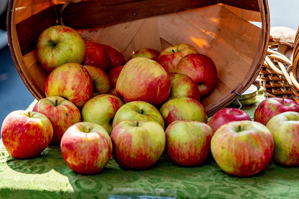 Czy 24 listopada to niedziela handlowa? (zdjęcie ilustracyjne)