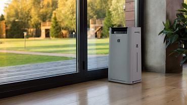Jaki oczyszczacz powietrza wybrać do małego, a jaki do dużego biura?